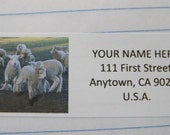 Easter Animals -- Theme Package Number Four -- Return Address Label