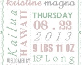 Cross Stitch Pattern Typography Baby Birth Record with Border
