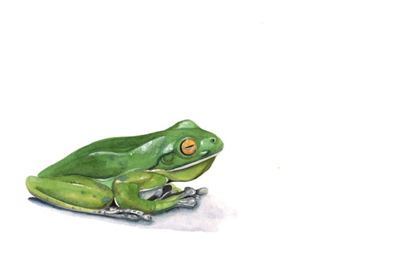 Frog painting -F070-  print of watercolor painting - 5 by 7 print