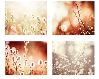 Rustic Nature Photography Set, rust beige brown cream red light botanical wall print set pale colorful branches photographs country chic