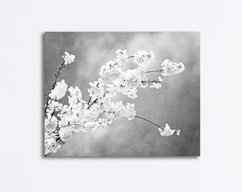 "Floral Black and White Canvas, grey photography gray wall print large gallery wrapped canvas tree branches botanical, ""Autograph of Angels"""