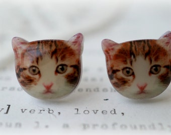 Resin Acrylic Ginger and White Cat Stud Earrings