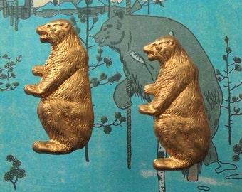 Rare Bears (2 pc)