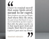 Shawshank Redemption Movie Quote. Typography Print. 8x10 on A4 Archival Matte Paper