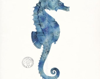 Coastal Decor Giclee Art Print - Antique Sea Horse Natural History Nautical Wall Decor - lagoon