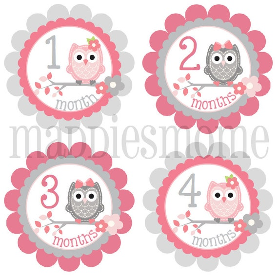 Baby Girl Month Stickers Monthly Baby Stickers Milestone