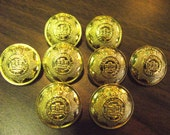 British Army The Devonshire Regiment Buttons King's Crown Military Battle Royal - Set of 8 Metal Button s Gold