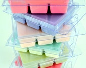 6pc Surf Wax Soy Melts - DISCONTINUED PRICE 3.00