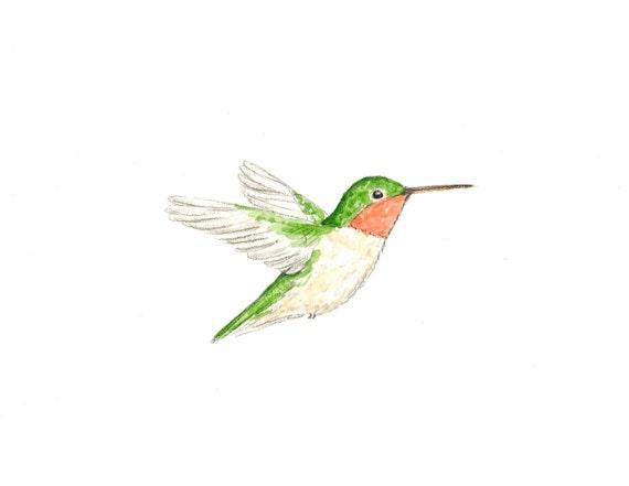 Hummingbird original watercolor painting kids wall art nursery