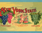 Cupid Brand - New York State Grapes - Label, Giclee Print.