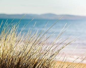 nautical decor beach grass photography beach 8x10 24x36  fine art photography ocean nature photography coastal prints sand dunes blue beige