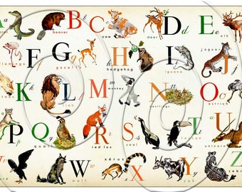 LARGE SiZe - Animal ENGLISH Alphabet  - Horizontal - 36 x 24 - Also Available in FRENCH L'alphabet en Français