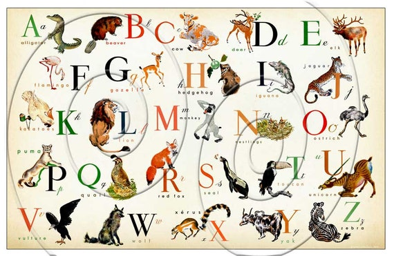 items similar to large size animal english alphabet horizontal 36 x 24 also available in. Black Bedroom Furniture Sets. Home Design Ideas