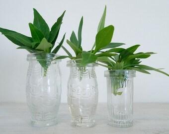 vintage mismatched small glass jar trio - pecks and heinz