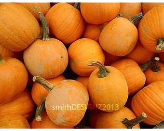 Pumpkin Decor, Photography, Harvest Photo, Wall Decor, Vinyl Wall Decal, Thanksgiving Decor, by Abby Smith