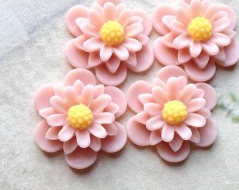 19 mm Tan Brown Colour Daisy Chrysanthemum Resin Flower Cabochons (.as)