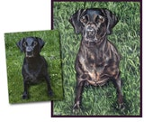 custom dog portrait pet oil painting black lab puppy art great gift 14x18 made to order by Heather Hughes