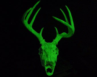 Halloween Deer Skull Taxidermy with Antlers Glow in the Dark Art Sculpture