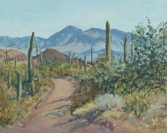 Mining Road, Marana, AZ.