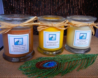 Baker's Delight Fragrance Collection Scented Soy Candle Trio - Banana Nut Bread, Lemon Squares, and Very Vanilla 12 oz Status Jars