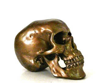 skull, industrial design, mod home decor, skull heads, metallic bronze, anatomy model, science