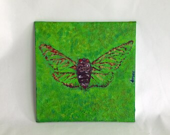 Insect Specimen by Donna Mark