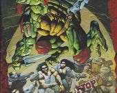 Casey Jones & Raphael Comic Book - (1994) - No. 1