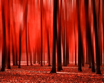 Red nature decor, red autumn wall art, red blur forest, dark red autumn branches, surreal large wall art, Tallinn, Estonia