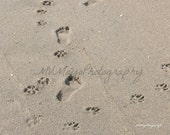Foot Prints In Sand / Dog Prints In Sand / Dog Man Footprints / Pet Sympathy Card / Free US Shipping
