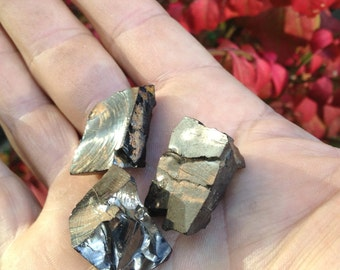 Noble Shungite