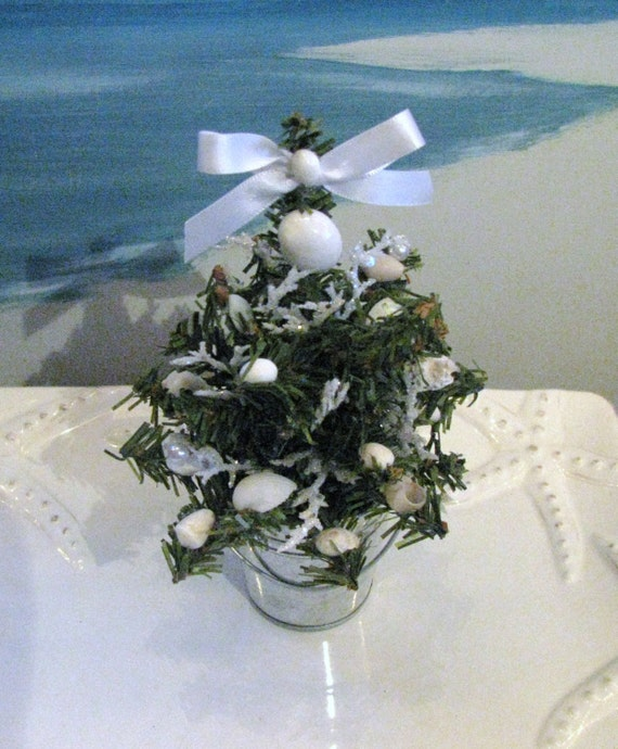 Mini seashell christmas tree in a bucket white coral tree for Miniature tree decorated with sea shells