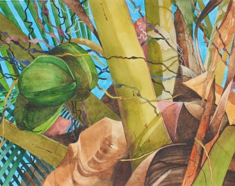 "Art Original Watercolor Painting ""GREEN COCONUTS"" of Kiaweiki Homestead"