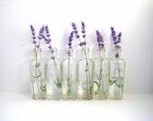 Vintage Glass Bottles - Collection of 6 Vases - Flea Market Chic