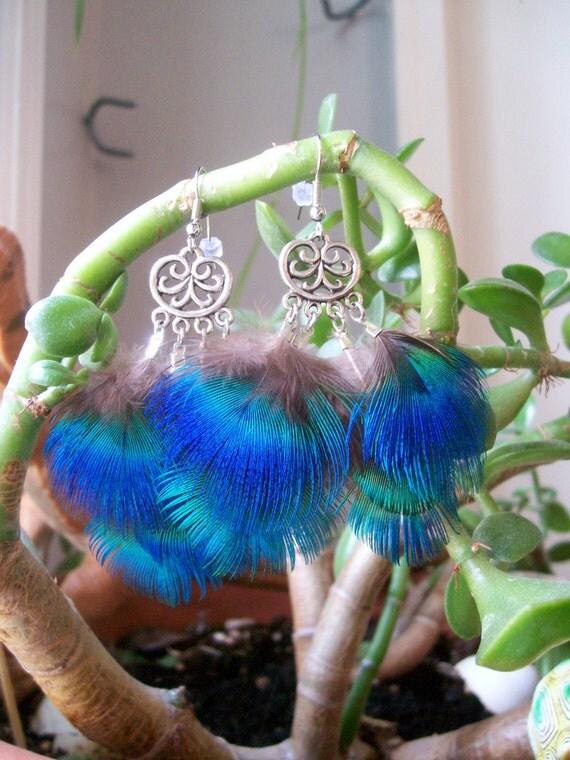 Shimmering Chandelier Peacock Wings Feather Earrings