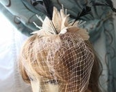 Cute cream  color  feather  clip
