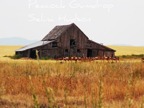 Old Barn with a field of wheat photo - 8 x 10 frame Print Art Photography yellow brown