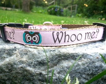 Who Me 3/4 Inch Width Dog Collar