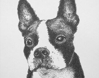 Boston Terrier Pen and Ink Pointillism Print