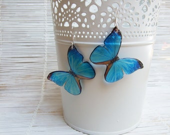 Resin Transparent Earrings Blue Butterflies