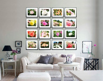 Set of 16 dahlias Photography Collection photo Large floral art wall decor JPEG via E-mail Printable pink red dahlia print instant download