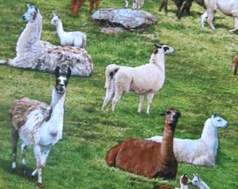 Farm Animals-alpaca and llamas fabric--by the yard--Elizabeth's Studio