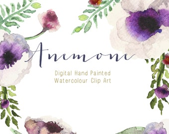 Watercolour Flowers - Hand Painted Clip Art - Anemone