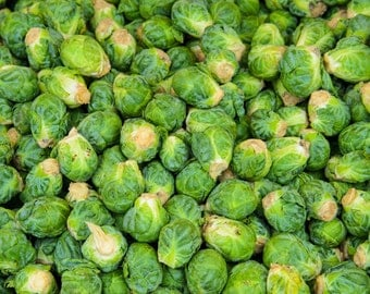 Food Photography - Brussels Sprouts - Farmers Market - San Francisco, CA - 8x10 Fine Art Photograph - Kitchen Wall Art