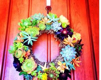 "18"" Sea star succulent wreath"