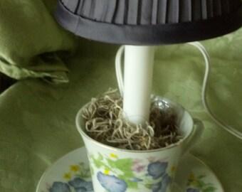Morning Glory lamp/ teacup night light