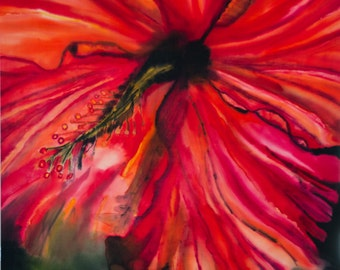 Red Hibiscus, 22X28