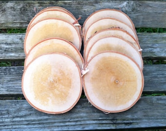 "10 Birch wood slices 3.5"" - 4.5"""