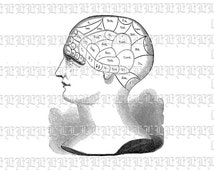 Side View Profile Human Head Phrenology Vintage Clip Art Illustrations HQ 300 dpi Digital Image Printable Medical Graphic. Img1769