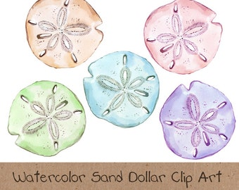 Watercolor Clip Art, Ocean, Sea, Sand Dollar