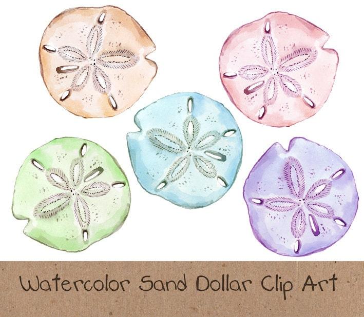 Clip Art Sand Dollar Clip Art sand dollar clipart etsy watercolor clip art ocean sea dollar
